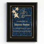 Constellation Plaque Achievement Awards
