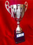 Silver Cup Trophy Fantasy Awards