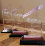 GPA Acrylic Wedge Trophy Glass Awards