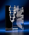 Rectangle Crevice Acrylic Award Sales Awards