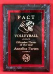 Volleyball Achievement Plaque Volleyball Trophy Awards