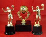 Volleyball Figure Volleyball Trophy Awards